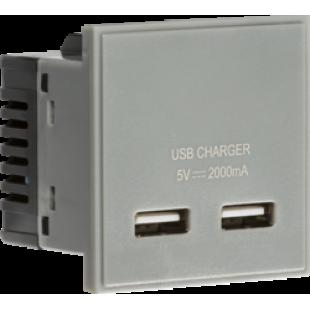 Knightsbridge Dual USB Charger (2A) Module 50mm x 50mm - Grey